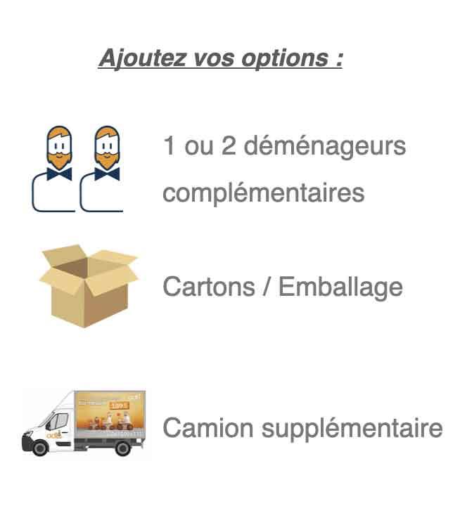 Besoin de déménageur complémentaire, des cartons, des emballages pour vos meubles, ou un/des camions supplémentaires ? Rajoutez des options en fonction de vos besoins !