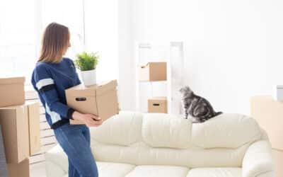 Comment préparer mon animal de compagnie pour mon déménagement ?